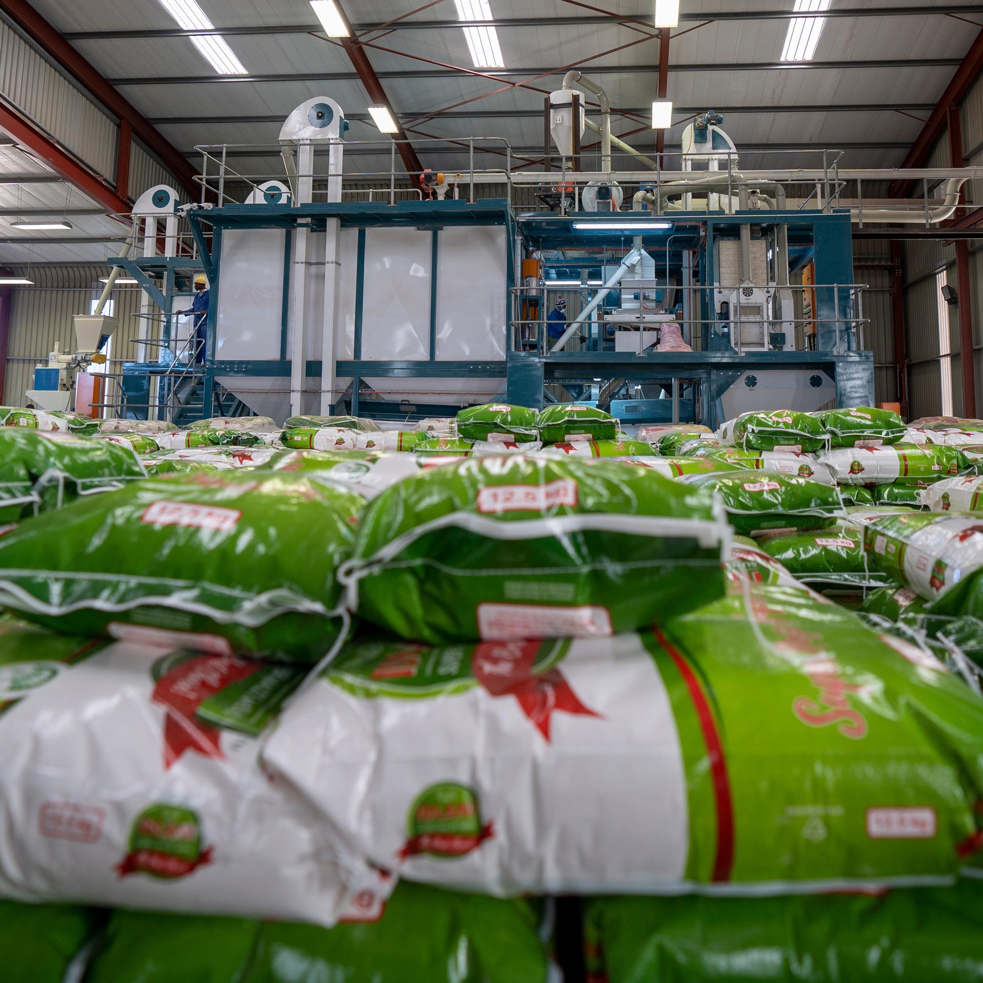 1-1-Idlani-product-R-70-Maize-Milling-Machine2
